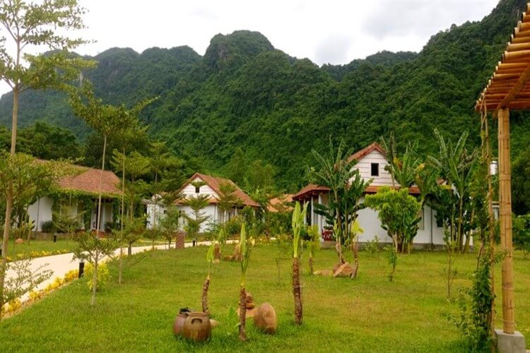 5 homestays are popular in Phong Nha